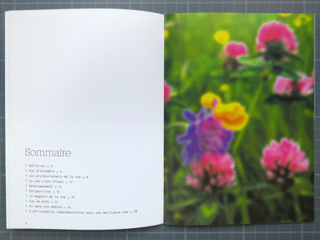 Claude Closky, 'Flowers', 2000, Dijon: Visual. Press kit, 32 pages, 18 x 13 cm.