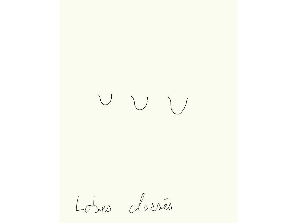 Claude Closky, 'Lobes classés [classified lobes]', 1996, black ballpoint pen on paper, 30 x 24 cm.