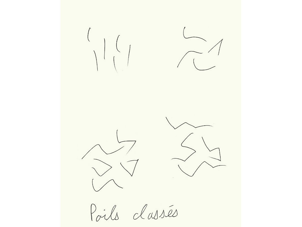 Claude Closky, 'Poils classés [classified body hair]', 1995, black ballpoint pen on paper, 30 x 24 cm.