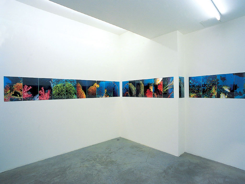 Claude Closky, 'Seen With My Head Tilted Left and Tilted Right Beneath the Red Sea', 1997, c-prints, 45 x 1260 cm (44 prints 45 x 30 cm each).