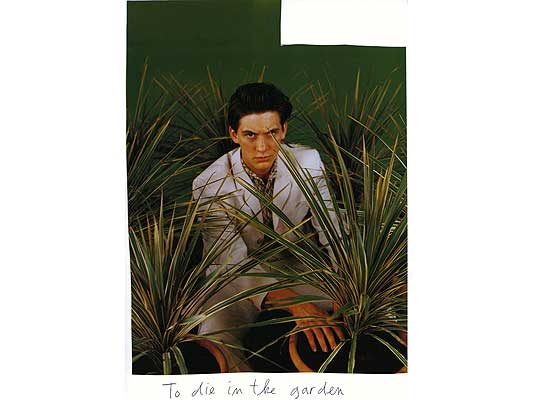 Claude Closky, 'To die in the garden', 2009, collage and ball-point pen on paper, 30 x 21 cm.