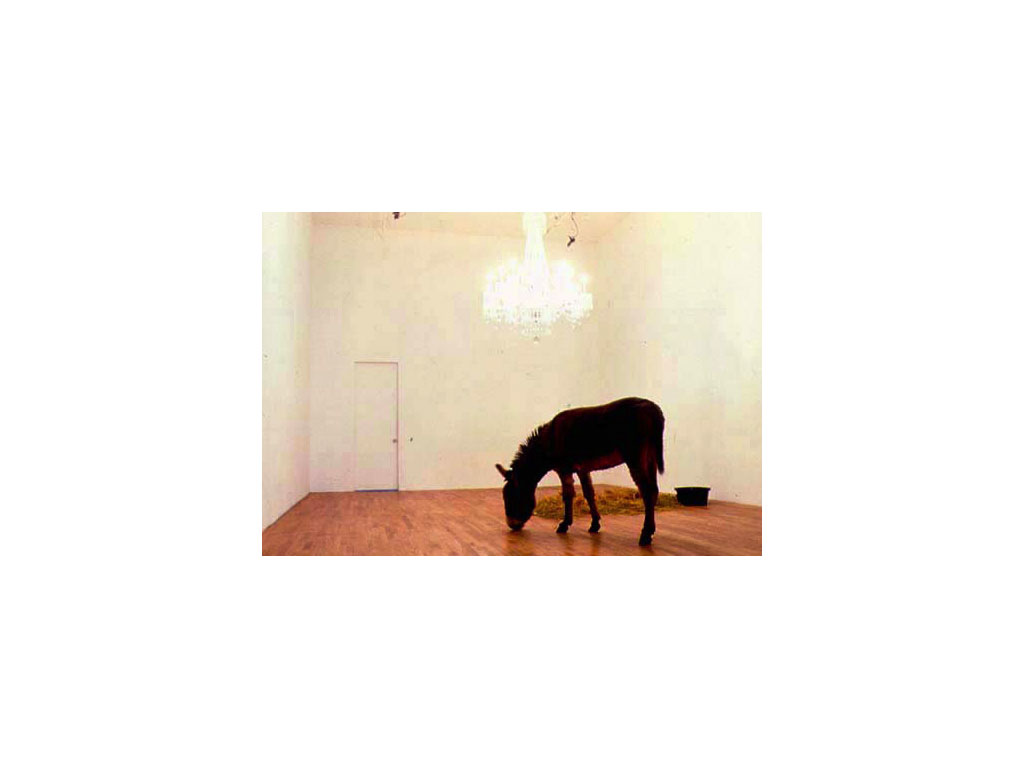 Maurizio Cattelan, Warning! Enter at Your Own Risk, 1993